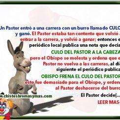 El burro del pastor llamado Culo - Chistes de curas y monjas